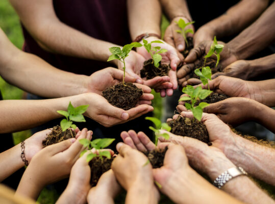 equity crowdfunding per le imprese sociali